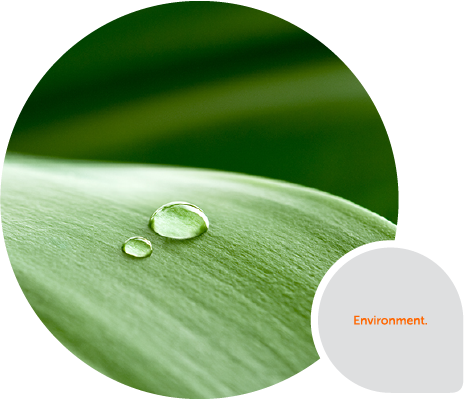 Hygiene Systems - Environment Image